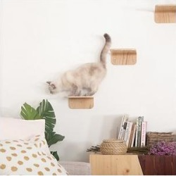 MyZoo Lack Wall Mounted Cat Shelves, 2 count, Small found on Bargain Bro from Chewy.com for USD $45.47