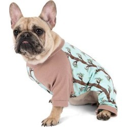 Leveret Pet Pajamas - Aqua Owl Dog Pajamas found on Bargain Bro from zulily.com for USD $5.31