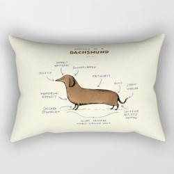 Rectangular Pillow | Anatomy Of A Dachshund by Sophie Corrigan - Small (17