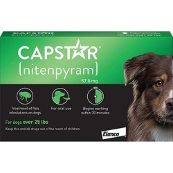 Capstar Large Dog 57 Mg 25.1-125 Lbs Green 12 Tablets found on Bargain Bro Philippines from Canadapetcare.com for $44.48