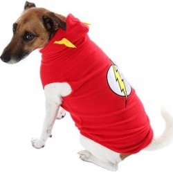 Intimo Pet Costumes Red - The Flash Pet Costume found on Bargain Bro from zulily.com for USD $11.39