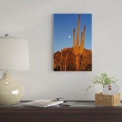 East Urban Home 'Saguaro Cactus in Desert Landscape, Sonoran Desert, Saguaro National Monument in Blue/Brown/Indigo, Size 26.0 H x 18.0 W x 1.5 D in found on Bargain Bro Philippines from Wayfair for $89.99