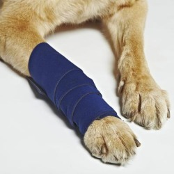 HEALERS Medical Leg Wraps with Gauze Pads, Small found on Bargain Bro Philippines from petco.com for $12.95