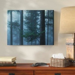 Millwood Pines 'Wooden Things (35)' Photographic Print on Canvas Canvas & Fabric in White, Size 12.0 H x 36.0 W x 2.0 D in   Wayfair found on Bargain Bro Philippines from Wayfair for $133.99