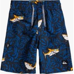 Quiksilver Boys' Swim Briefs Unknown - Black & Blue Zebra Shark Logo Swim Shorts - Toddler & Boys