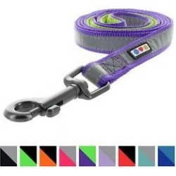 Pawtitas Nylon Reflective Padded Dog Leash, Purple, Medium/Large: 6-ft long, 1-in wide found on Bargain Bro India from Chewy.com for $15.99