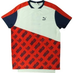 Puma Mens World Cup T-Shirt Colorblock Fitness found on Bargain Bro from Overstock for USD $11.62