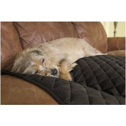 FurHaven ThermaNap Plush Velvet Self-Warming Dog & Cat Mat, Espresso, Medium found on Bargain Bro India from Chewy.com for $14.85