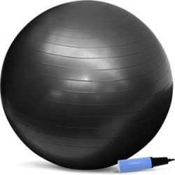 PurAthletics Exercise Balls Black - Black Exercise Ball & Pump found on Bargain Bro Philippines from zulily.com for $17.38