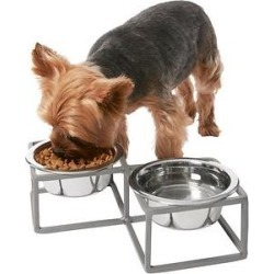 Frisco Diamond Non-Skid Elevated Double Dog & Cat Bowl, 2 Cup