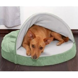 FurHaven Microvelvet Snuggery Memory Top Cat & Dog Bed w/Removable Cover, Sage, 26-in found on Bargain Bro India from Chewy.com for $35.99