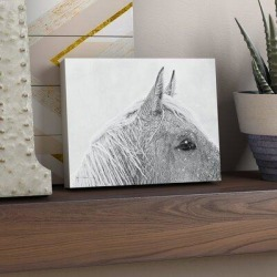 Union Rustic 'Snow Daze I Crop' Photographic Print on Canvas Canvas & Fabric in White, Size 36.0 H x 48.0 W x 2.0 D in   Wayfair found on Bargain Bro Philippines from Wayfair for $129.99