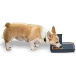 PetSafe Digital 2-Meal Automatic Dog & Cat Feeder found on Bargain Bro India from Chewy.com for $39.95