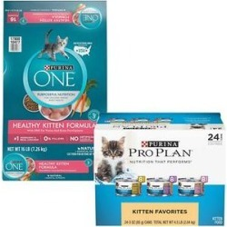 Purina ONE Healthy Kitten Formula Dry Food + Purina Pro Plan FOCUS Kitten Favorites Wet Kitten Food found on Bargain Bro Philippines from Chewy.com for $45.33