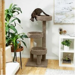 Frisco 50-in Real Carpet Wooden Cat Tree, Gray