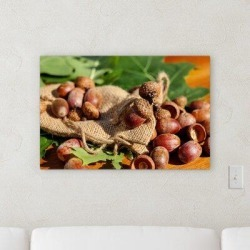 Millwood Pines 'Acorns' Photographic Print on Canvas Canvas & Fabric in Brown/Green, Size 20.0 H x 30.0 W x 2.0 D in   Wayfair found on Bargain Bro Philippines from Wayfair for $151.99
