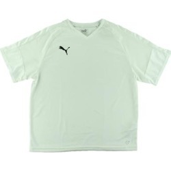 Puma Mens Borussia Jersey Running Fitness found on Bargain Bro from Overstock for USD $11.54