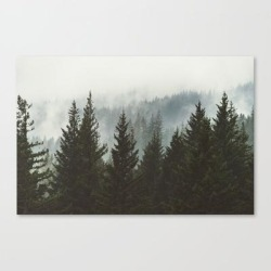 Wanderlust Forest Ii - Mountain Adventure In Foggy Woods Canvas Print by Cascadia - LARGE