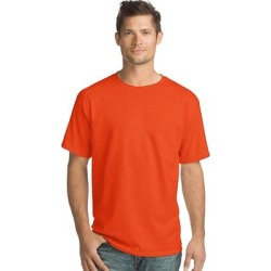 petite Hanes ComfortSoft Men's Short-Sleeve Crewneck T-Shirt 4-Pack (Deep Forest - L), Deep Green found on Bargain Bro India from Overstock for $25.88