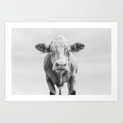 Art Print | Animal Photography | Cow Portrait Minimalism | Farm Animals | Black And White by Wildhood - X-Small - Society6