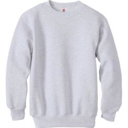 Hanes Boys 7.8 oz. ComfortBlend? EcoSmart? 50/50 Fleece Crew (P360) (Light Steel - XS), Men's, Gray found on Bargain Bro Philippines from Overstock for $15.98