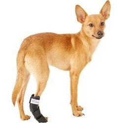 HandicappedPets Rear Leg Dog & Cat Splint, XX-Small found on Bargain Bro India from Chewy.com for $50.00