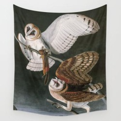 Wall Hanging Tapestry | Barn Owls, The Birds Of America By John James Audubon by Vintagearchive - 51