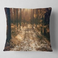 Designart 'Road in Dark Wooded Forest' Modern Forest Throw Pillow (Square - 18 in. x 18 in. - Medium), Brown, DESIGN ART(Polyester, Floral) found on Bargain Bro from Overstock for USD $25.98