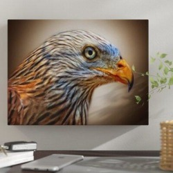 Millwood Pines 'Bald Eagle' Graphic Art Print on Wrapped Canvas Canvas & Fabric in Brown, Size 18.0 H x 24.0 W x 2.0 D in   Wayfair found on Bargain Bro Philippines from Wayfair for $119.99
