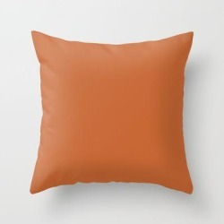 Burnt Orange Couch Throw Pillow by Sara Valor - Cover (16