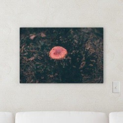 Millwood Pines 'Outside Artifacts' Photographic Print on Wrapped Canvas Metal in Black/Brown/Pink, Size 16.0 H x 32.0 W x 2.0 D in   Wayfair found on Bargain Bro Philippines from Wayfair for $152.99