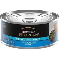 Purina Pro Plan Focus Adult Classic Urinary Tract Health Formula Ocean Whitefish Entree Canned Cat Food, 5.5-oz, case of 24