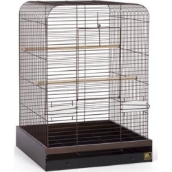Prevue Pet Products Madison Bird Cage Copper, Medium found on Bargain Bro Philippines from petco.com for $239.99