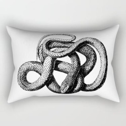 Rectangular Pillow | The Snake by Vintage Europe - Small (17