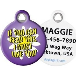 Dog Tag Art I Must Like You Personalized Dog & Cat ID Tag, Large