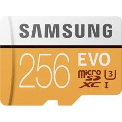 Samsung EVO 256GB microSD Memory Card found on Bargain Bro India from Crutchfield for $32.99