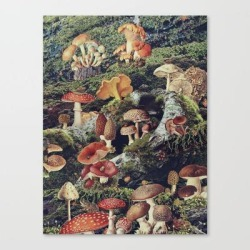 Canvas Print   Enchantment by Maggie Green - LARGE - Society6