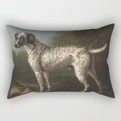A Grey Spotted Hound By John Wootton Rectangular Pillow by Artmasters - Small (17
