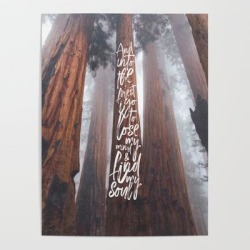 John Muir-and Into The Forest I Go To Lose My Mind And Find My Soul Art Poster by Anthony Londer - 18