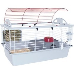 Hagen Living World Deluxe Habitat, Large, Red found on Bargain Bro Philippines from petco.com for $119.99