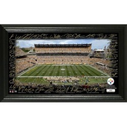 Pittsburgh Steelers Highland Mint 12
