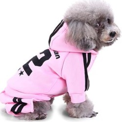 Royal Wise Pet Hoodies Pink - Pink Stripe '82' Pet Hoodie & Sweatpants Set found on Bargain Bro from zulily.com for USD $9.11