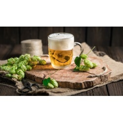 Home Brewing Beer