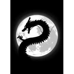 Mortal Dragon found on Bargain Bro India from displate for $48.00