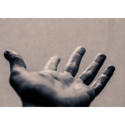 Photograph of an open human hand found on Bargain Bro India from Displate EU for $50.70