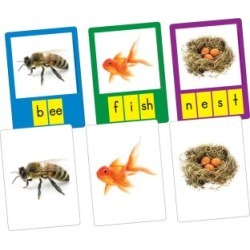 Small Group Phoneme Photo Cards by Really Good Stuff Inc