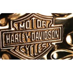 $25.0 Harley Davidson Gift Card at 0.0% off
