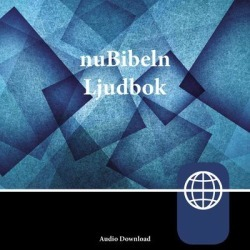 nuBibeln, Audio Download - Download found on GamingScroll.com from Downpour for $9.99