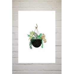 Brie Harrison Hanging Fern Basket Wall Art Print - Assorted 2 at Urban Outfitters found on Bargain Bro UK from Urban Outfitters (UK)