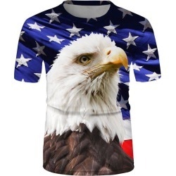 Eagle Flag Graphic Casual Crew Neck T Shirt found on MODAPINS from dresslily for USD $19.99